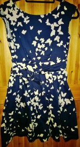 Navy Swamp Dress